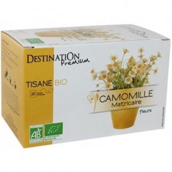 Infusion of Chamomile...