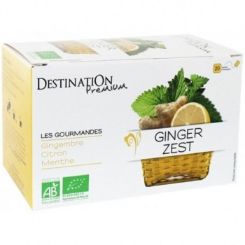 Infusion Gourmande Ginger...